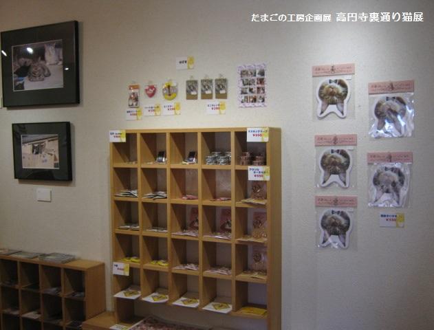 たまごの工房企画展「高円寺裏通り猫展」  その2_e0134502_1955350.jpg