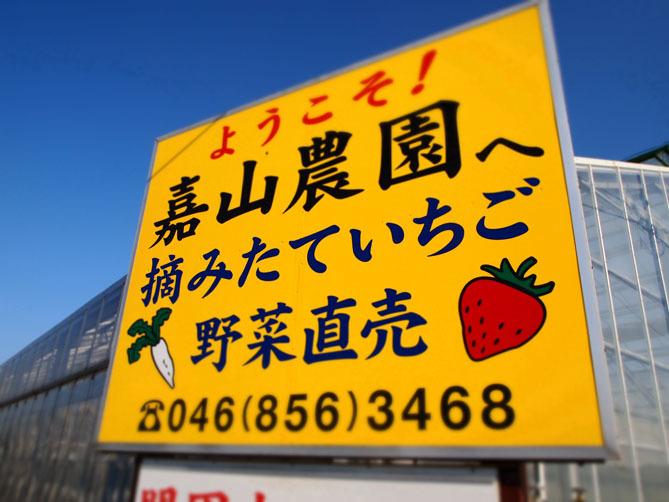 春のお出かけ情報 〜食べもの編〜_f0201310_18454959.jpg