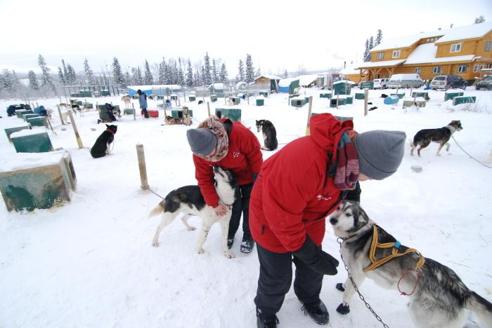 《犬ぞり》極北人と犬_d0112928_10374503.jpg