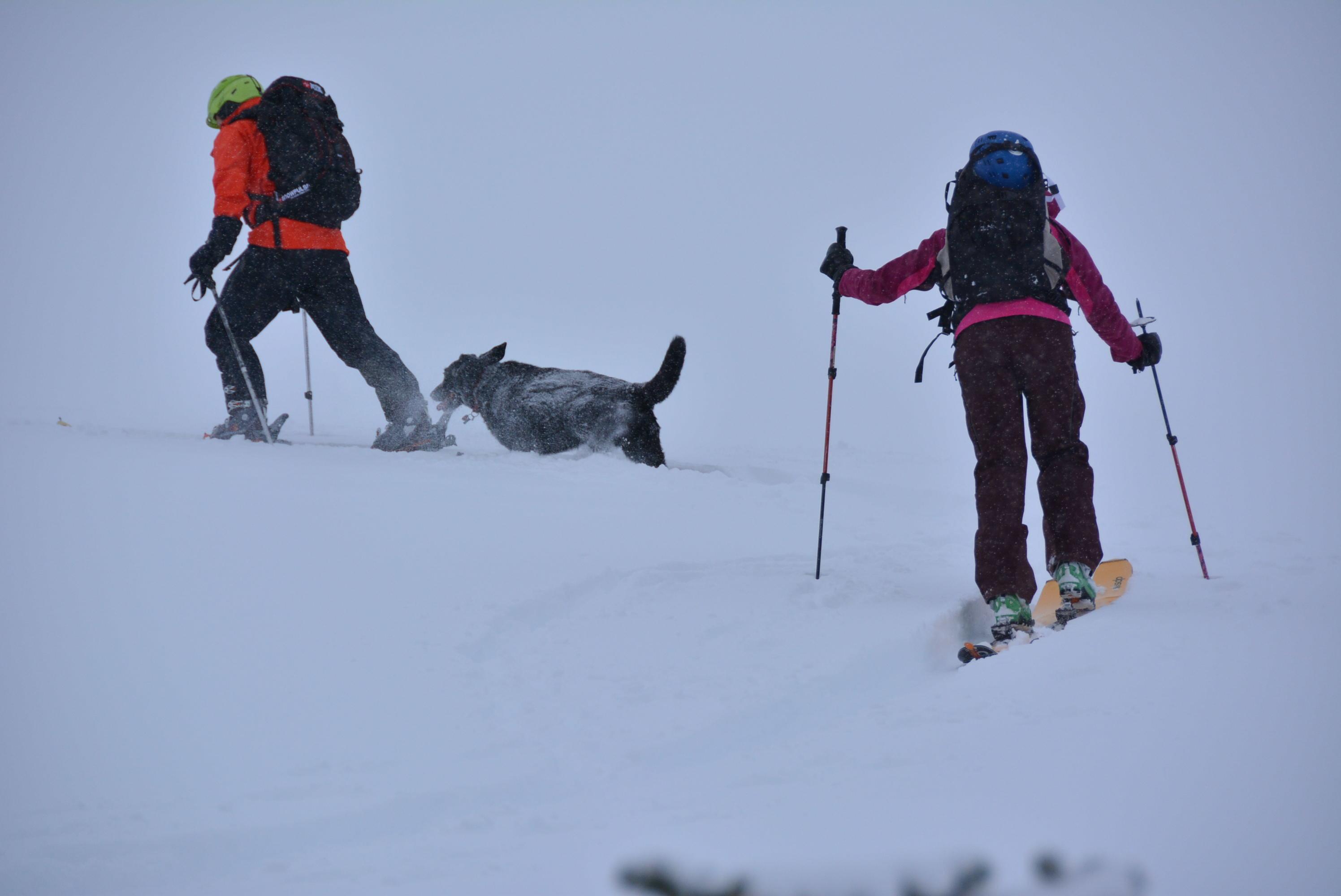 《犬ぞり》極北人と犬_d0112928_10471094.jpg