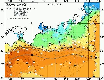 今年は海水温が高い?_f0009039_1314269.jpg