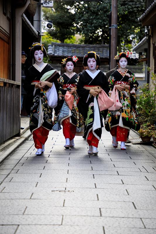 新年の挨拶回り(祇園甲部)(写真部門)_f0155048_23133256.jpg