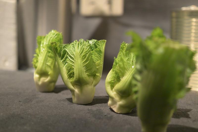 博多蕾菜(はかたつぼみな)!!サラダよし、焼いてよし、揚げてよし。&1月26日(木)のランチメニュー_d0243849_21334573.jpg