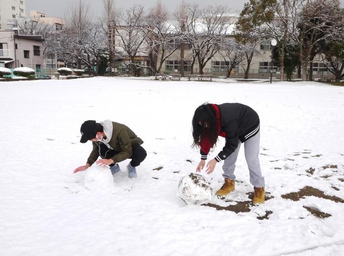 三年ぶりの雪便り (下)  _b0093754_22585242.jpg
