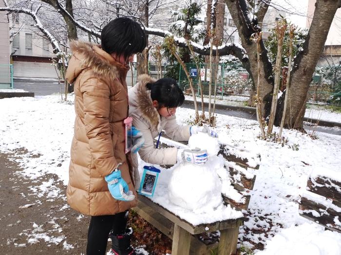三年ぶりの雪便り (下)  _b0093754_231466.jpg