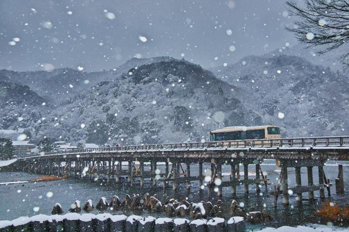 京都    1/15 嵐山_f0021869_22541161.jpg