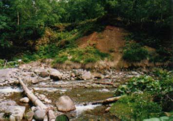 岩間温泉_a0160770_17405249.jpg