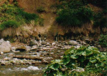 岩間温泉_a0160770_1740987.jpg