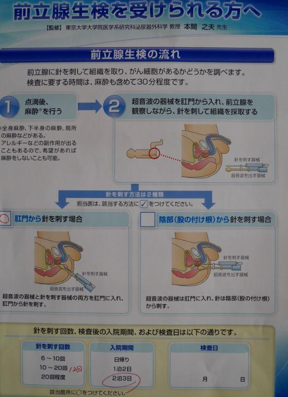 検査入院_f0138096_12064122.jpg