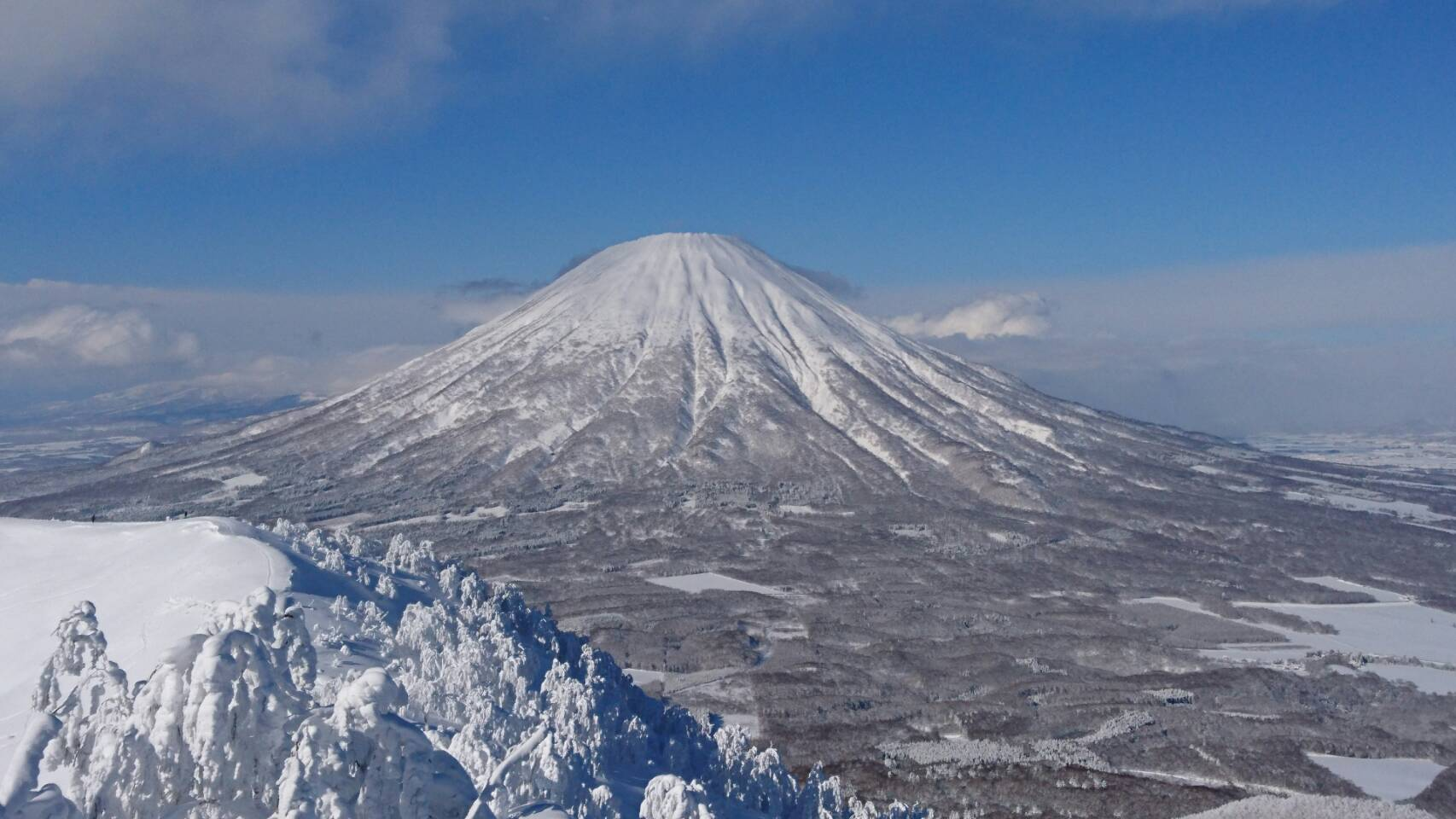 1月26日(木)山本が送ります。TOMMYの1日~ランクル ハマー アルファード_b0127002_17175984.jpg