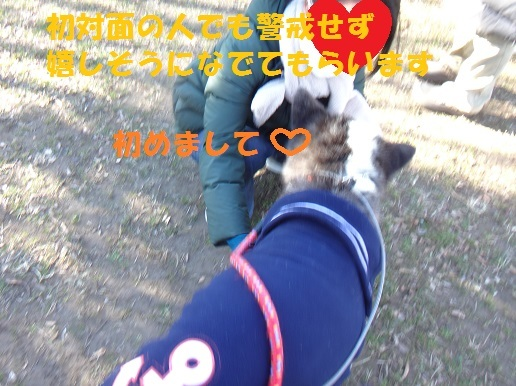 f0121712_09344244.jpg