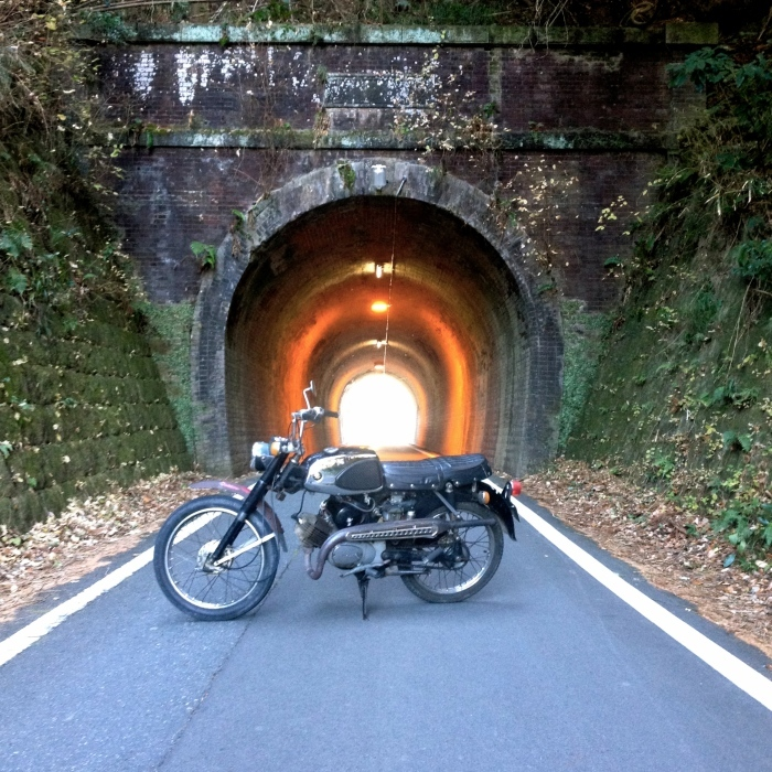 Discovered  a vintage  tunnel_d0179518_15534433.jpg
