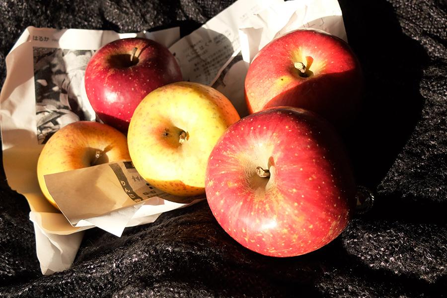 病院の検査の疲れを癒してくれた果樹園からのリンゴ_a0031363_0143591.jpg