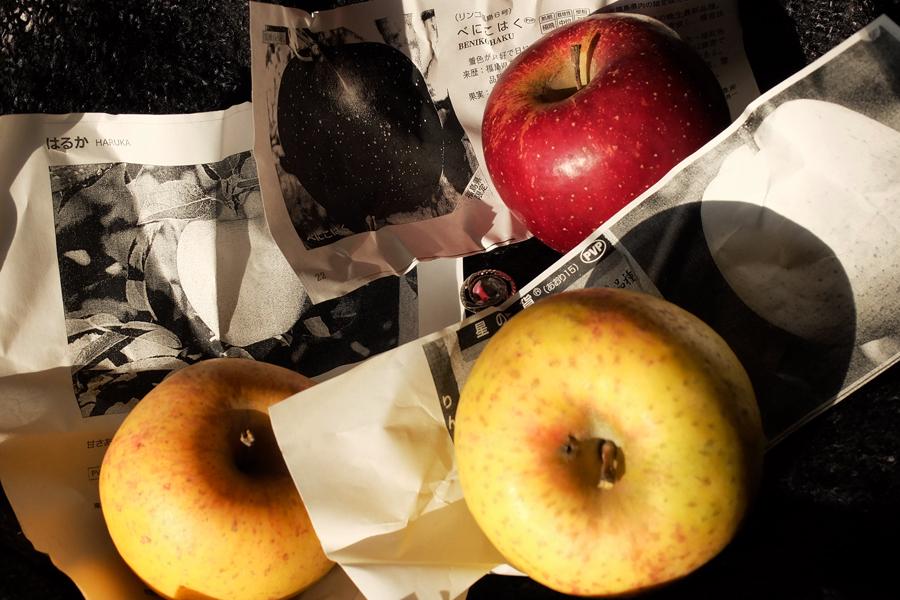 病院の検査の疲れを癒してくれた果樹園からのリンゴ_a0031363_015466.jpg