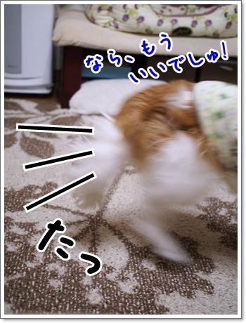 d0013149_01095312.jpg