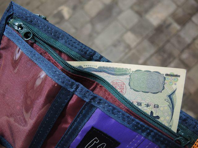 Multiple Wallet_b0316864_16521010.jpg