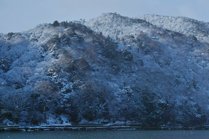京都    1/15 嵐山_f0021869_00012679.jpg