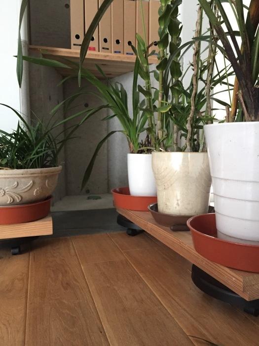 植物の台座は動くと便利_d0332870_17455691.jpg