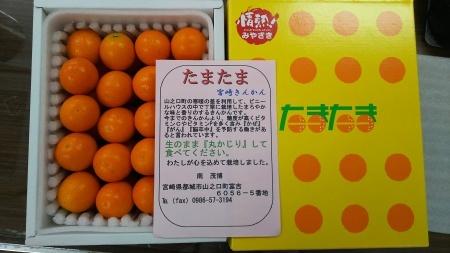 宮崎からのお土産_a0284279_11065032.jpg