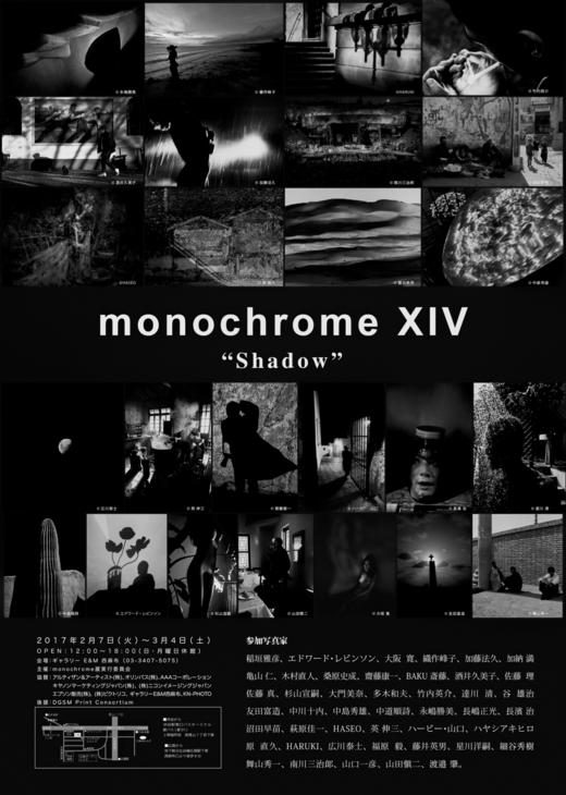monochrome XIV「Shadow」2月7日(火)から始まります!_b0194208_2355730.png