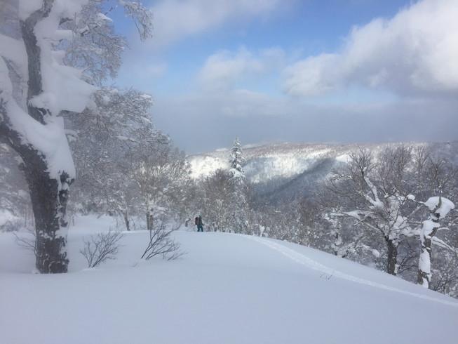 """2017年1月 『山の深雪』 January 2017 \""""Deep and Powder Snow\""""_c0219616_16303343.jpg"""