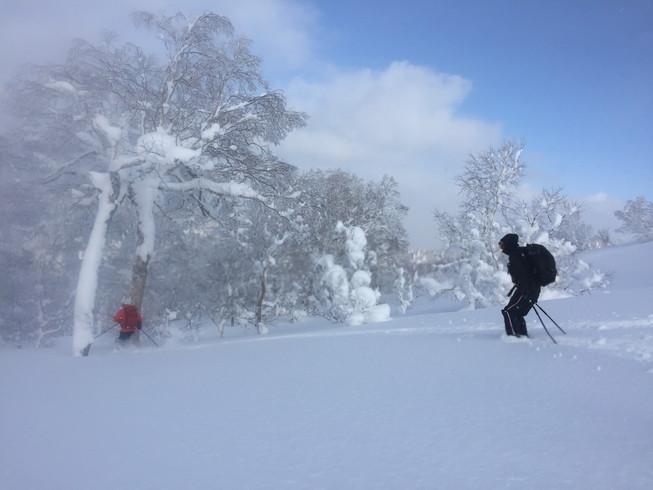 """2017年1月 『山の深雪』 January 2017 \""""Deep and Powder Snow\""""_c0219616_16305468.jpg"""