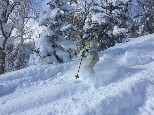 """2017年1月 『山の深雪』 January 2017 \""""Deep and Powder Snow\""""_c0219616_1631928.jpg"""