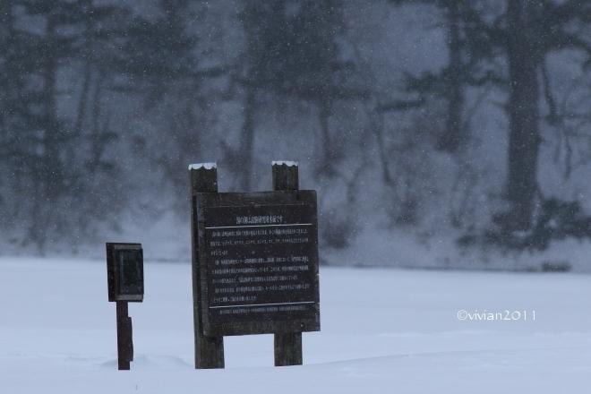 奥日光 特別撮影会 ~雪と氷の華厳の滝、中禅寺湖、竜頭の滝、湯ノ湖~_e0227942_22001682.jpg