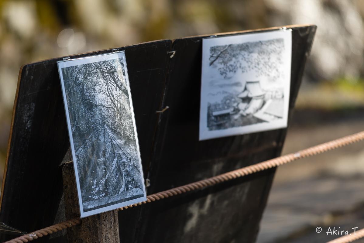 〜岩合光昭に挑戦〜 京都ネコ歩き -17-_f0152550_19514409.jpg