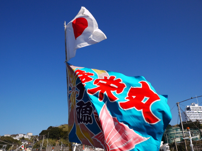和歌山市雑賀崎の旧正月 _b0093754_22303874.jpg
