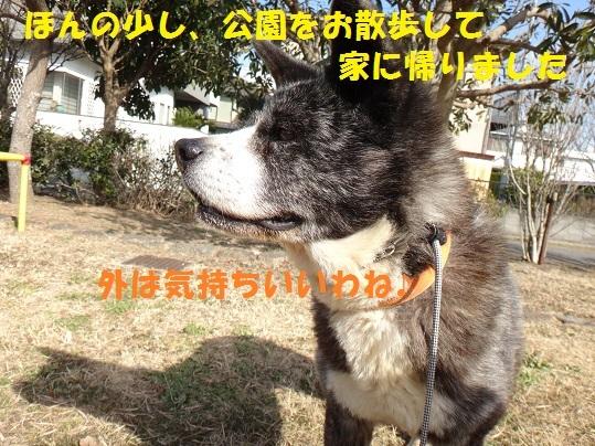 f0121712_14593948.jpg