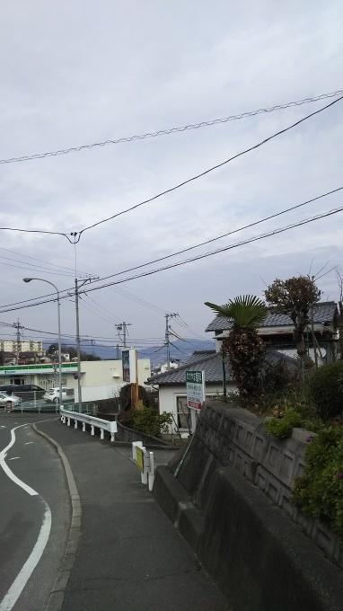 雨が上がるも西風強く_e0094315_10120132.jpg