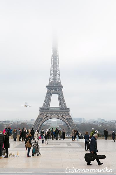 パリはちょっと寒さが落ち着きました_c0024345_08082216.png