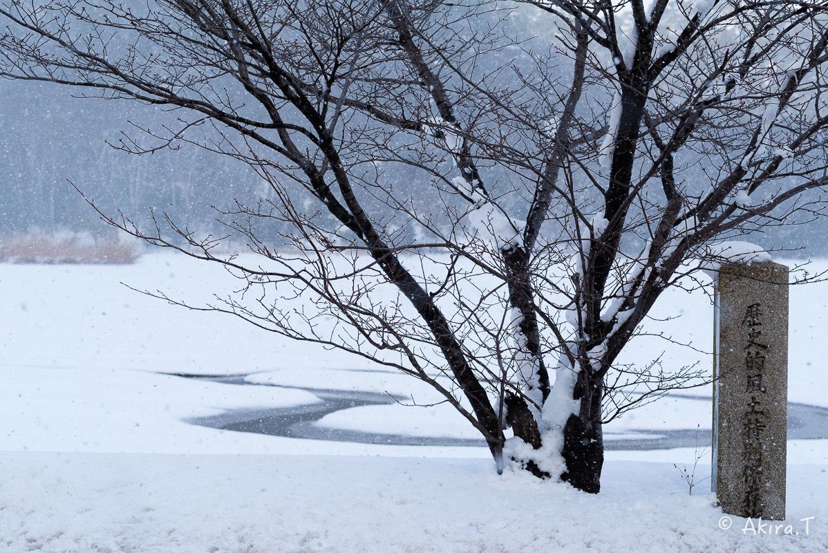 雪の広沢池 -2-_f0152550_22221144.jpg