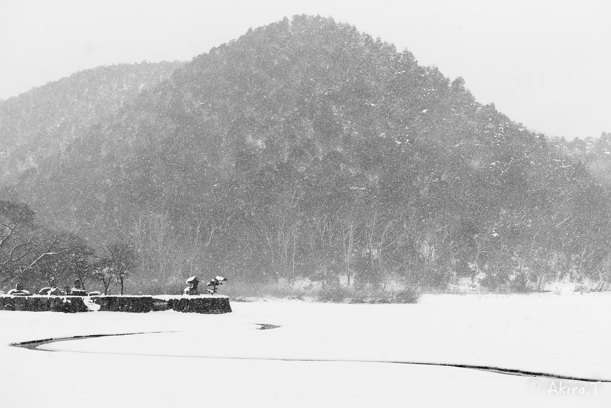 雪の広沢池 -2-_f0152550_22222698.jpg