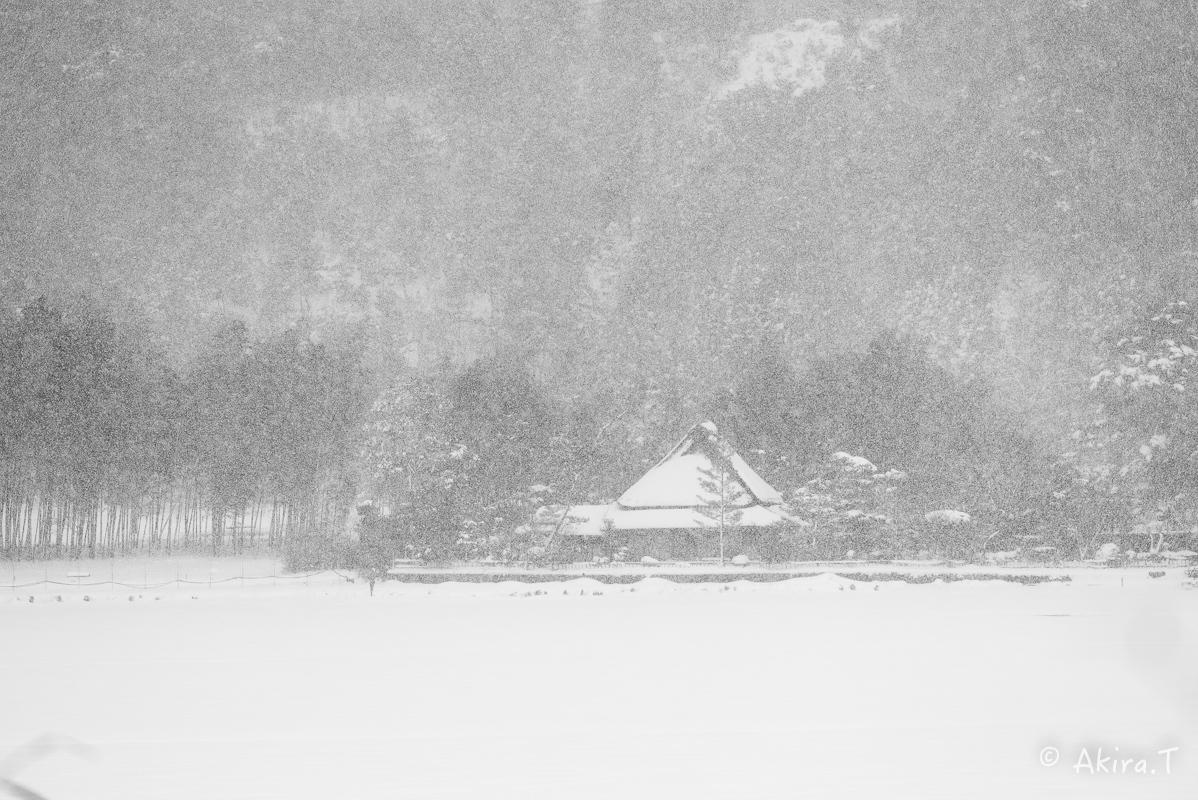 雪の広沢池 -2-_f0152550_22225361.jpg