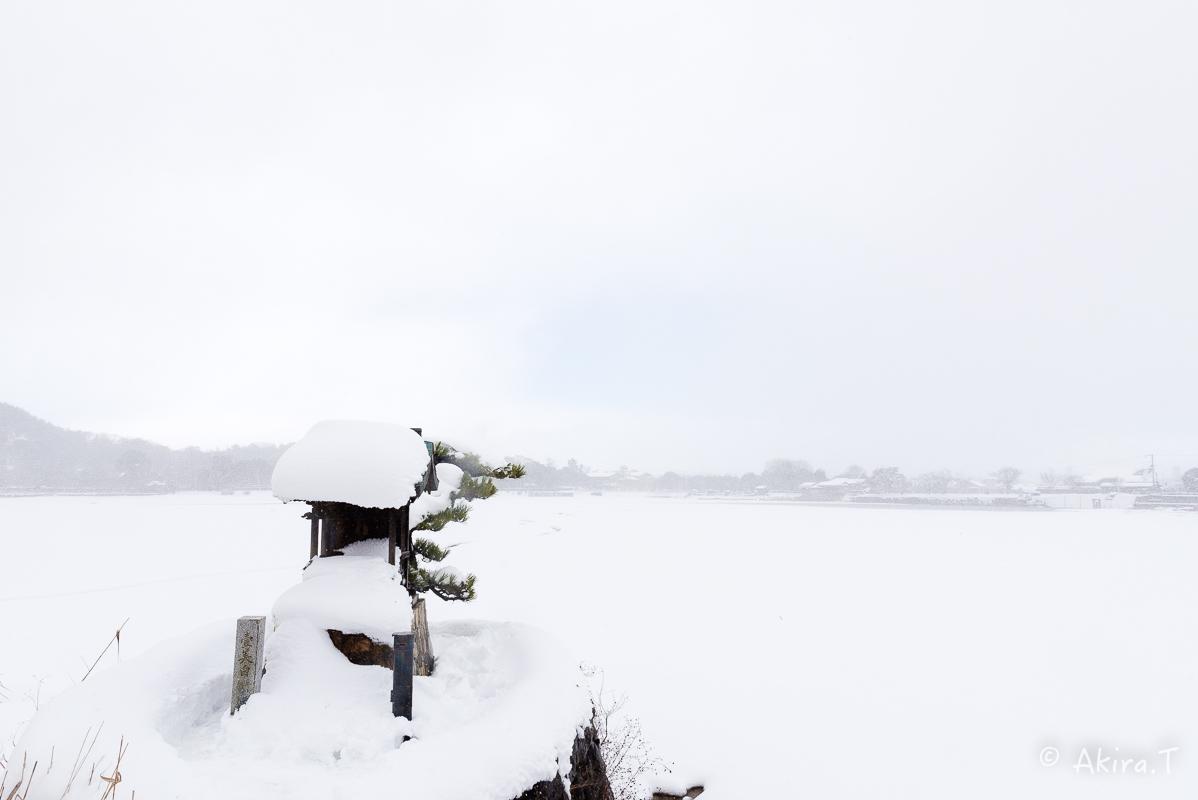 雪の広沢池 -2-_f0152550_22231951.jpg