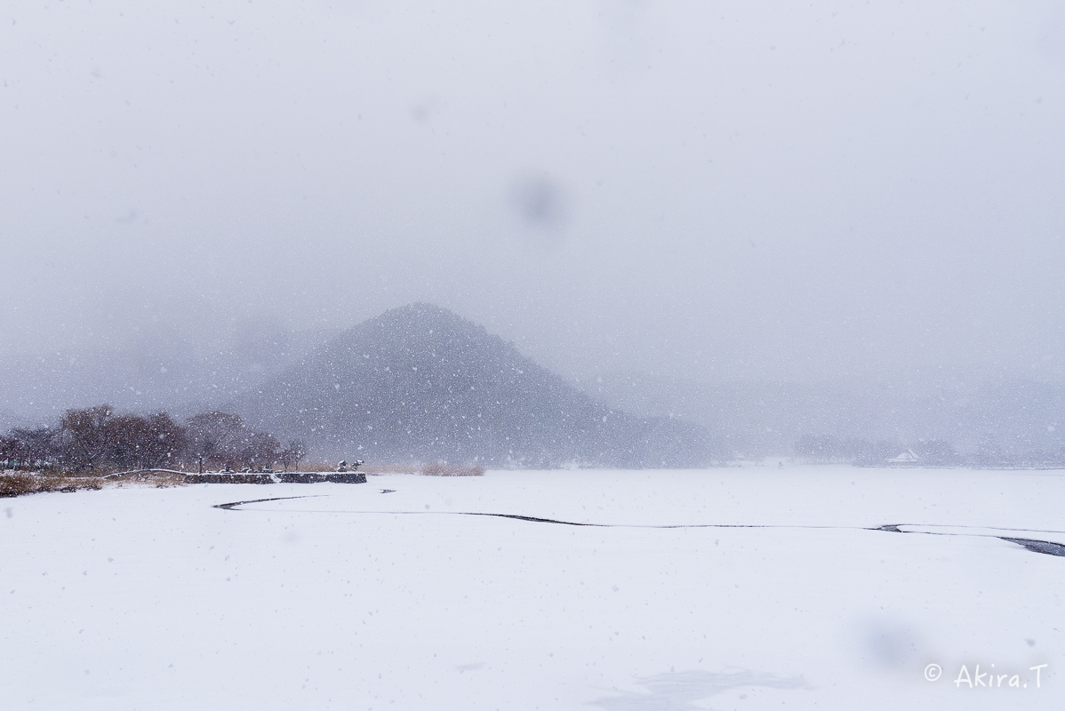 雪の広沢池 -2-_f0152550_22245309.jpg
