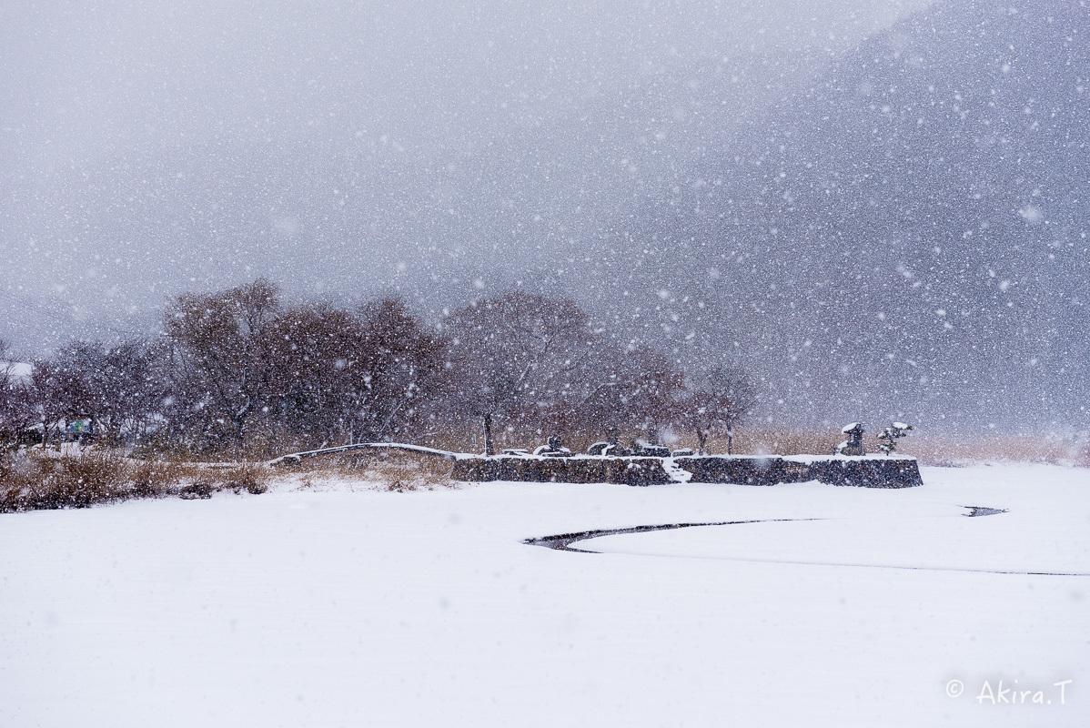 雪の広沢池 -2-_f0152550_22250699.jpg
