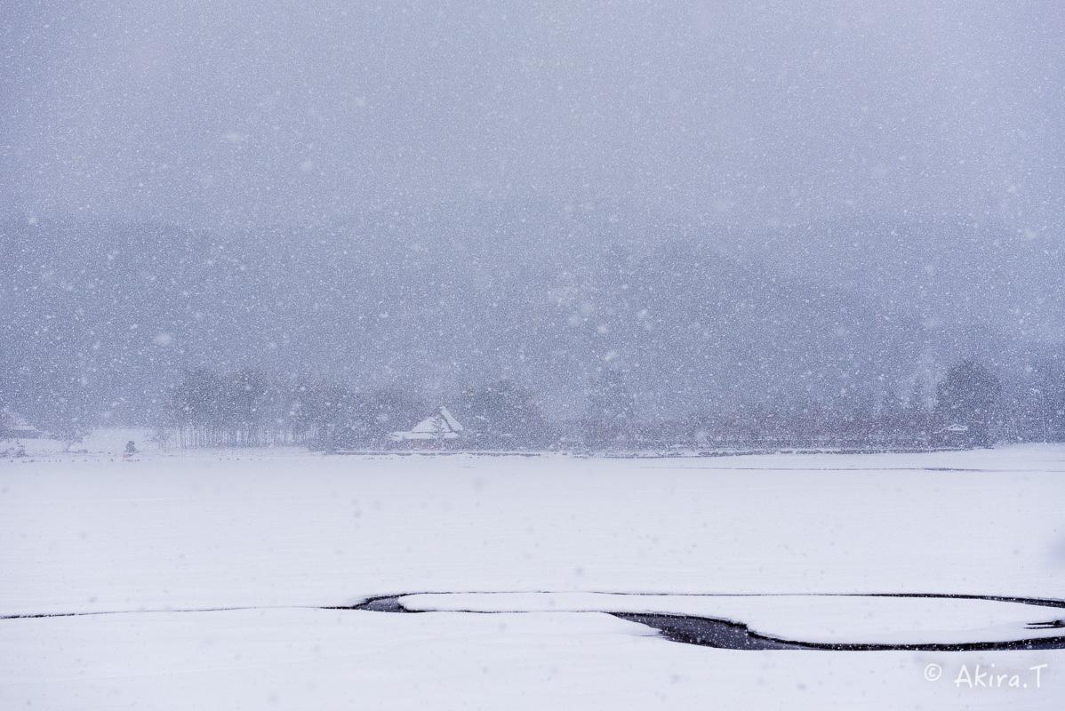 雪の広沢池 -2-_f0152550_22252046.jpg