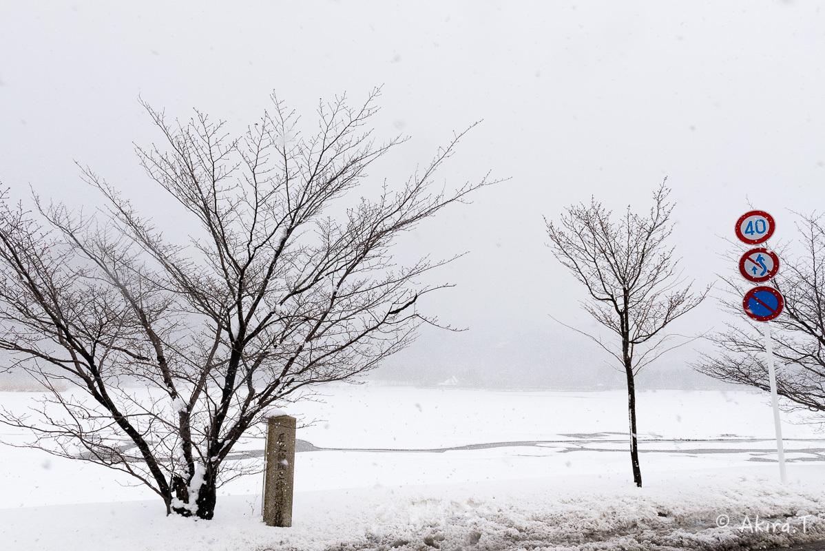 雪の広沢池 -2-_f0152550_22253428.jpg