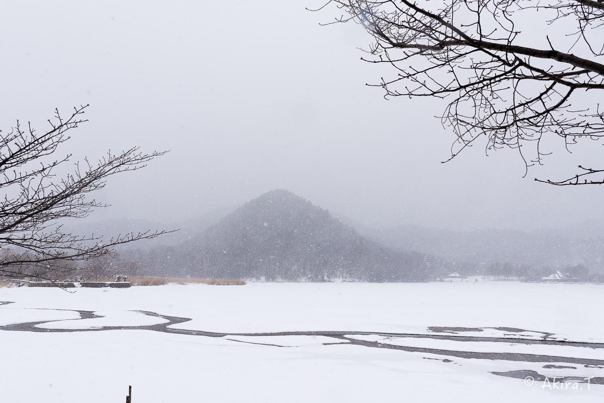 雪の広沢池 -2-_f0152550_22254743.jpg