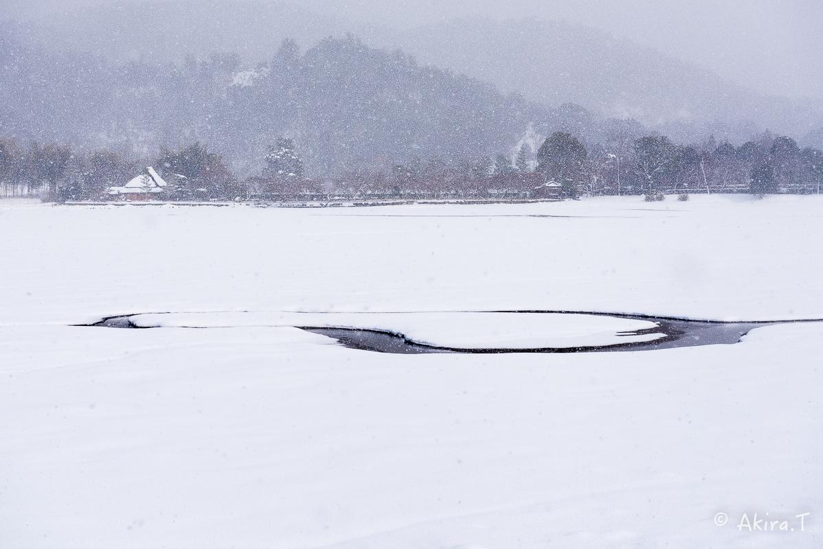 雪の広沢池 -2-_f0152550_22263651.jpg
