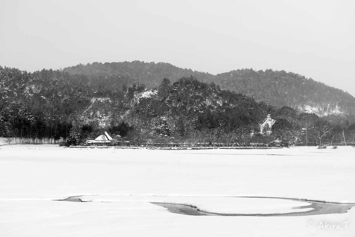 雪の広沢池 -2-_f0152550_22265181.jpg