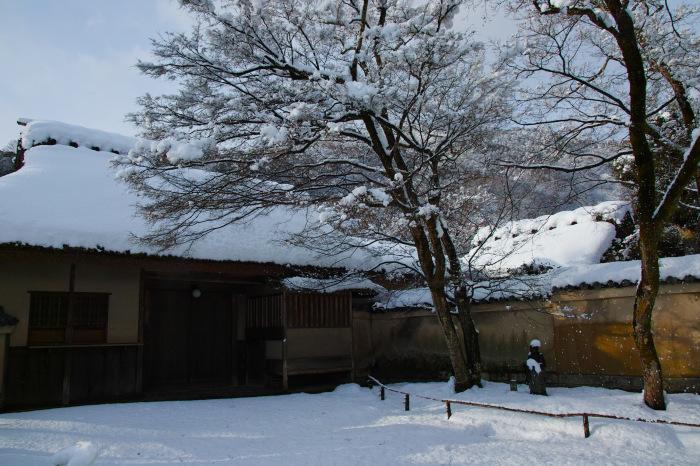 京都    1/15 嵐山_f0021869_00030293.jpg