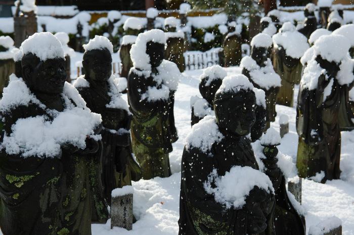 京都    1/15 嵐山_f0021869_00051081.jpg