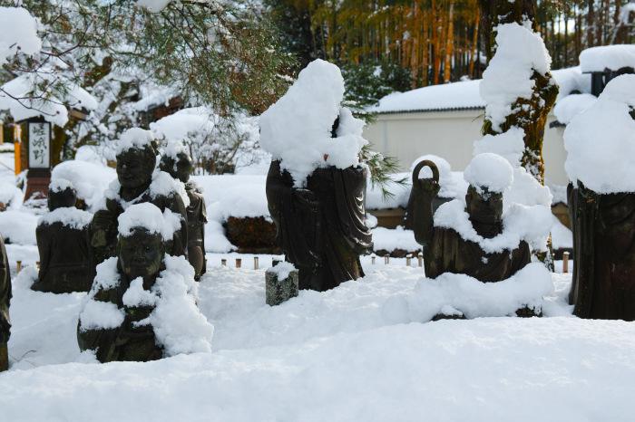 京都    1/15 嵐山_f0021869_00083782.jpg