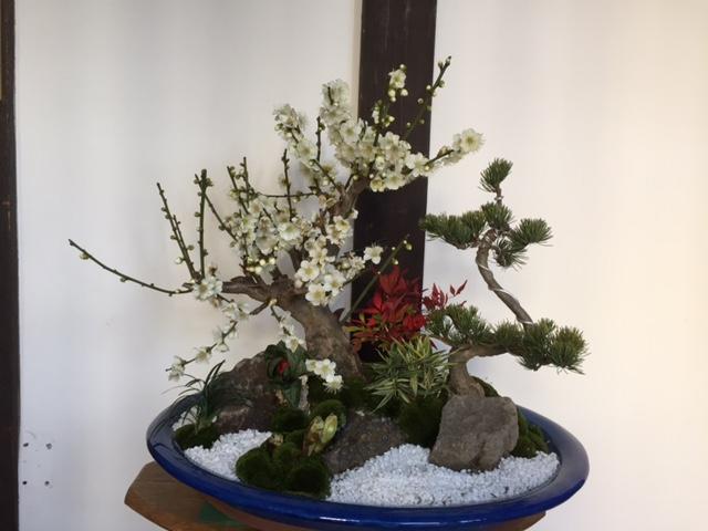 春はもうそこ迄_f0052181_15351045.jpg