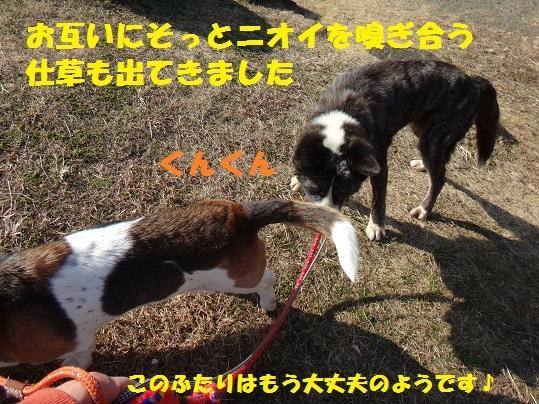 f0121712_14150027.jpg