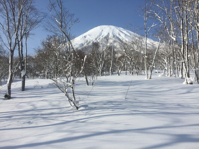 "2017年1月 『羊蹄山』 January 2017 ""Mt. Yotei, Ezo-Fuji\""_c0219616_22125047.jpg"